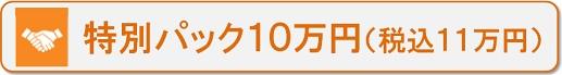 特別パック 10万円(税別)